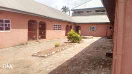 Hostel of 21 bedsitter for sale ogwashi