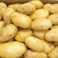 Quality Potatoes FRESH FROM FARM