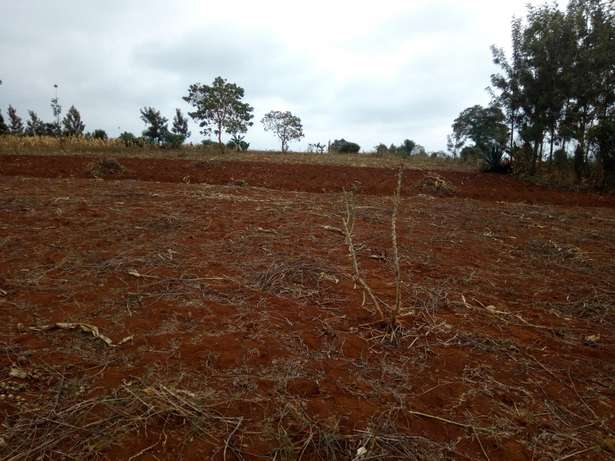 Mutundu Mangu investment plots Thika - image 1