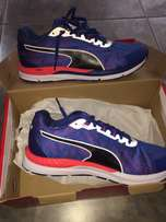 Brand New PUMA - running shoes