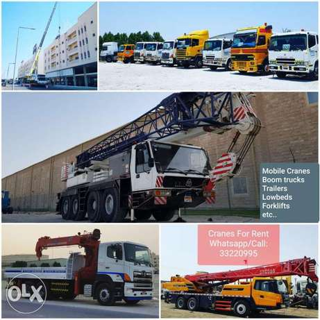 Cranes , Hiabs, Trailer, lowbed & forklifts for Rent with operator