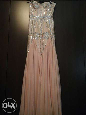 Strepless Light Pink and Silver dress