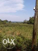 Residential plots available