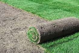 High quality Instant lawn