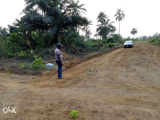 1-100 plots of already developing lands for sale in Portharcourt Obio/Akpor - image 7
