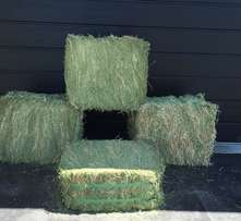 40 Bales x 23kg of Quality Compressed Lucerne