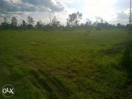 1/2 acre available in Thika Landless!!