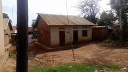 hot selling plot in namugongo at 50m
