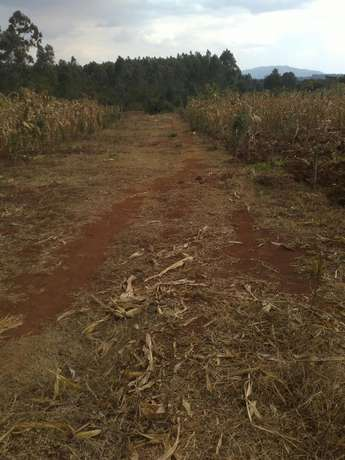 Land for sale Thogoto - image 5