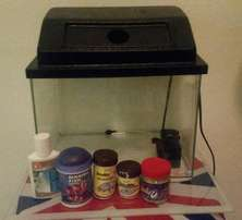 20 Litre fish tank with filter Pump & Accessories