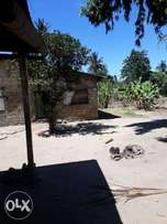 5 and a half acre agricultural land for sale kikambala