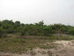 Plot of Land For Sale at Onosa Igando Ajah area has Neibour