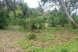 3/4 prime acre in Kilifi Bofa second row to the tarmac road for sale!!
