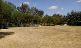 6.6 acres for sale in runda panafric at 65m per acre