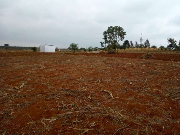 Mutundu Mangu investment plots Thika - image 3