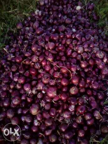 Onions for sale .dry and in store ready for selling. Utawala - image 4