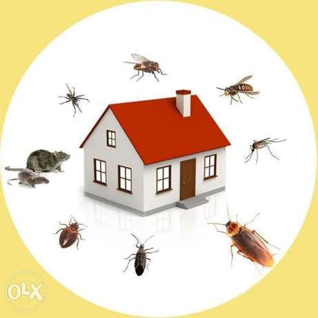 Pest control with low price