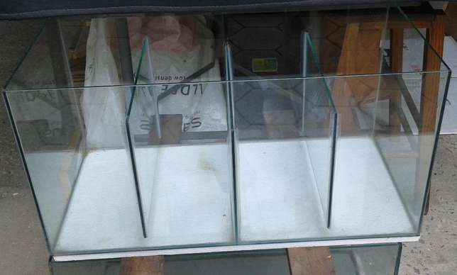 fish tanks for sale Queensburgh - image 5