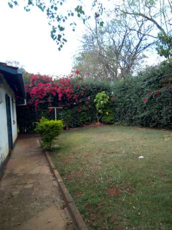 4 bedroom house for rent Loresho - image 7
