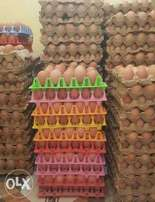 Eggs- 285/- Tray for sale -Kenyatta road
