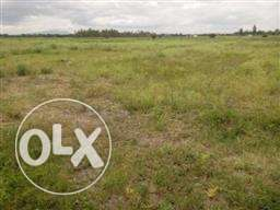 50x100 plot for sale in joska. 400000ksh with ready title