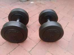 2 x 20kg Technogym Fixed Dumbbells - Great Condition