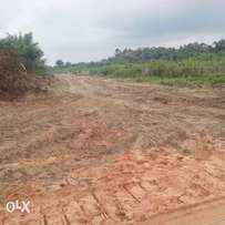 Genuine and affordable plots of Excision granted land in Ibeju lekki