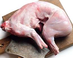 Eat healthy, Eat rabbit Meat (White Meat, LOW FAT, HIGHLY PROTEINOUS!!