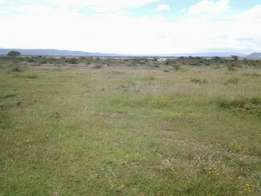 3 Acres near tarmac for sale in Mutaita - Nakuru
