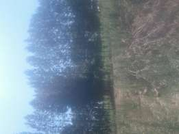 1-5 acres for sale in Ndenderu.