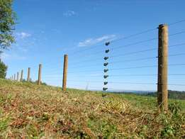 Electric perimeter fence for homes and farms