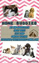 House and pet sitter service