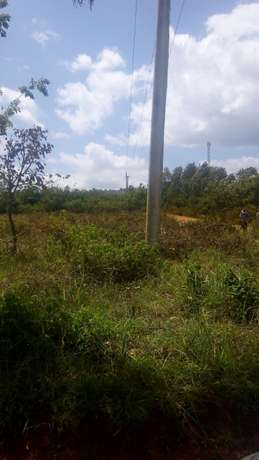Agricultural Land for Sale Ideal for Mangoes and Oranges Farming Mananja - image 6