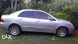 NZE 2005 Kericho clean, logbk available ready for transfer.