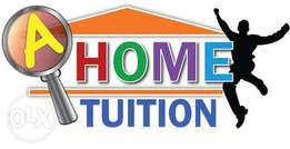 Quality Home tuition for students