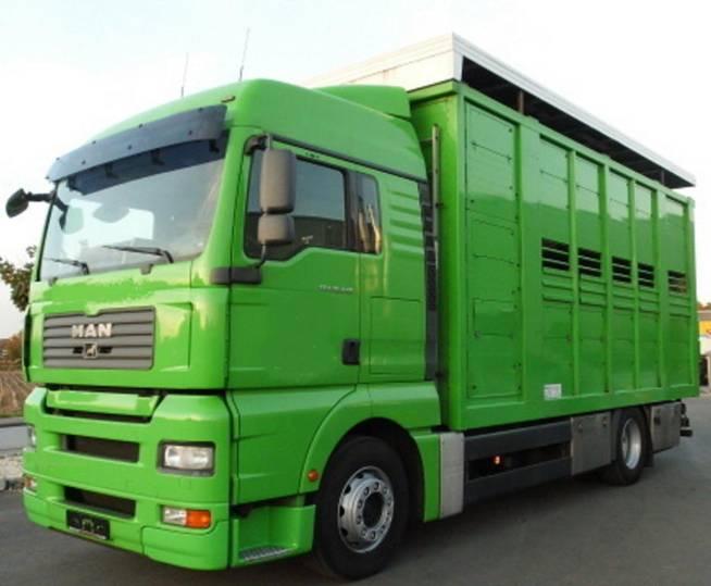 MAN TGA 18 440 GANADERO - 2008