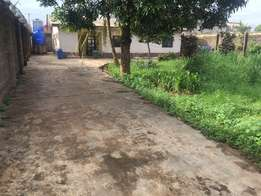 Building + Land for Sale (CoO)