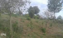 1acre in nyeri county