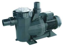Reconditioned Pool Pump