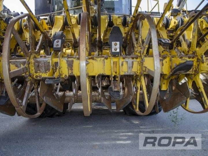 Ropa Euro-tiger V8-4b - 2012 - image 8