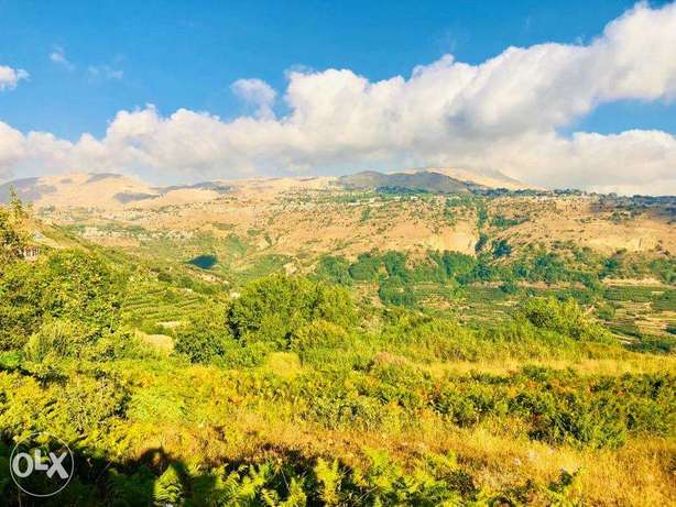 Land in Fakra (AHLAM village) with MOUNTAINS VIEW أرض في فقرا ٣٣٠٠ م ٢ فقرا -  4