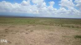 15 acres, 2.8 acres and 6 acres at Segera, Nanyuki.