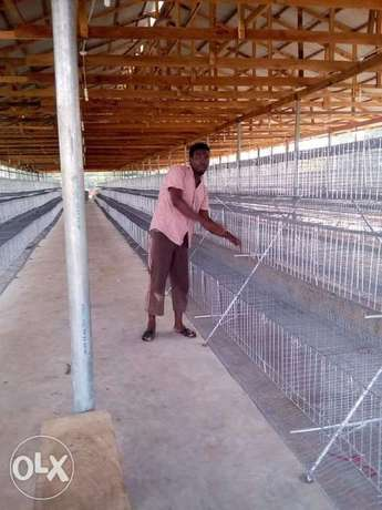 Galvanized local fabricated cages Ijebu Ode - image 8