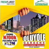 Secured and trusted Land at Ibadan most vibrant location