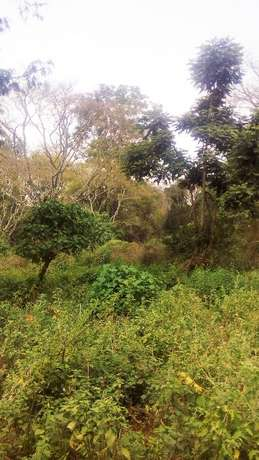 20 acres for sale in loresho Loresho - image 2