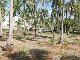½ Acre Parcel of Land for Sale in Watamu, Kenya