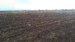 1/4 acre plot for sale near Greensted school,Nakuru