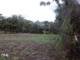 100 by 100 Plot For Sale