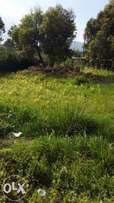 Ksh.2,M ,Machakos Scott plot 50x100 .