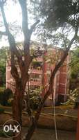 Westlands 2bedrooms apartment to let